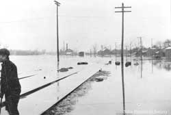 January 1904 flood in Niles .