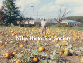 Phyllis' dad standing in seasonal pumpkin patch with the Autumn Hills retirement home across Niles-Vienna Road in the background.